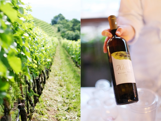 Südtirol Zuckerzimtundliebe Genussfestival Bozen Wein Kalterer See