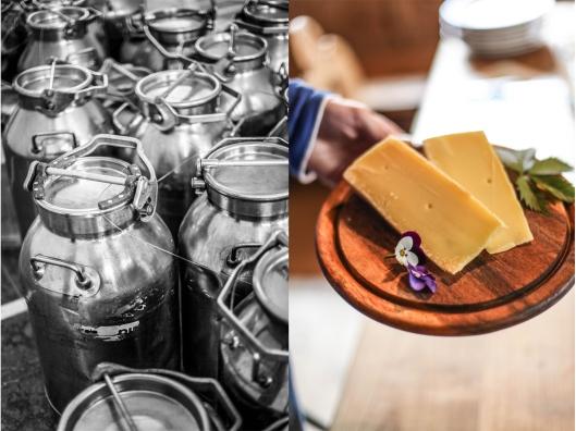 Zuckerzimtundliebe Milchprodukte aus Südtirol