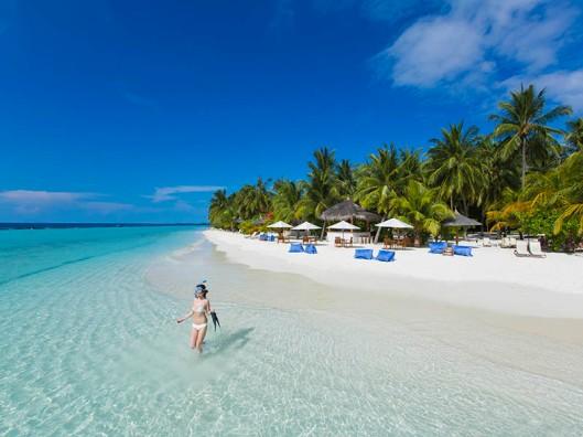 Zuckerzimtundliebe Kurumba Maldives Gewinnspiel Kokosnuss