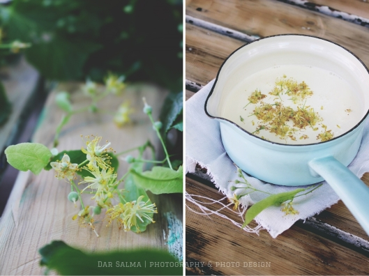 Rezept für Lindenblüten Panna Cotta mit Honig Himbeeren Dar Salma Zuckerzimtundliebe Stadtimker